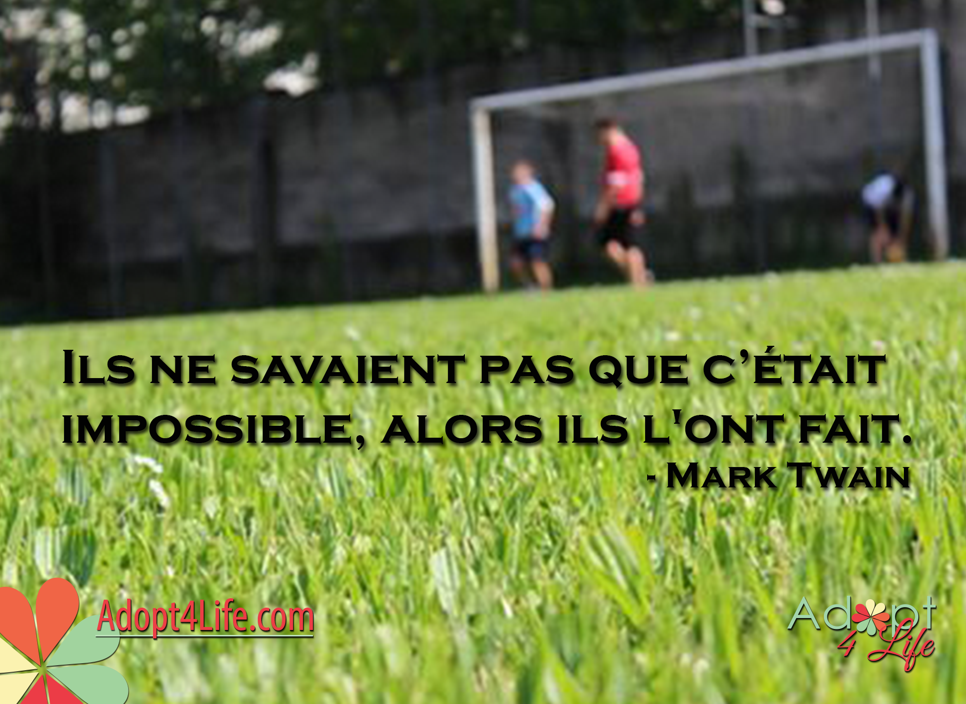 Facebook_AdoptionQuote_French_024_Dec2014_png.png