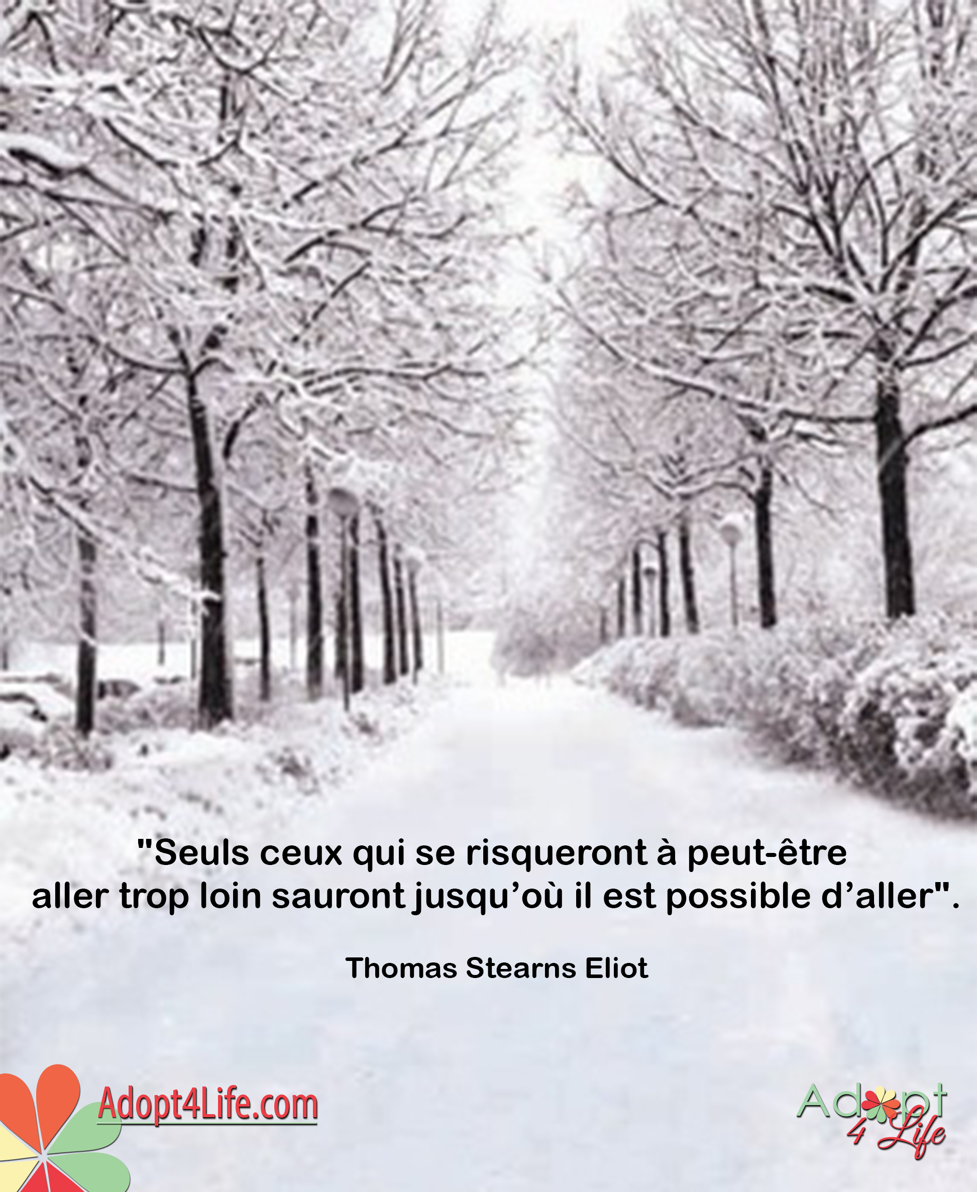 Facebook_AdoptionQuote_French_027_Dec2014_png.png