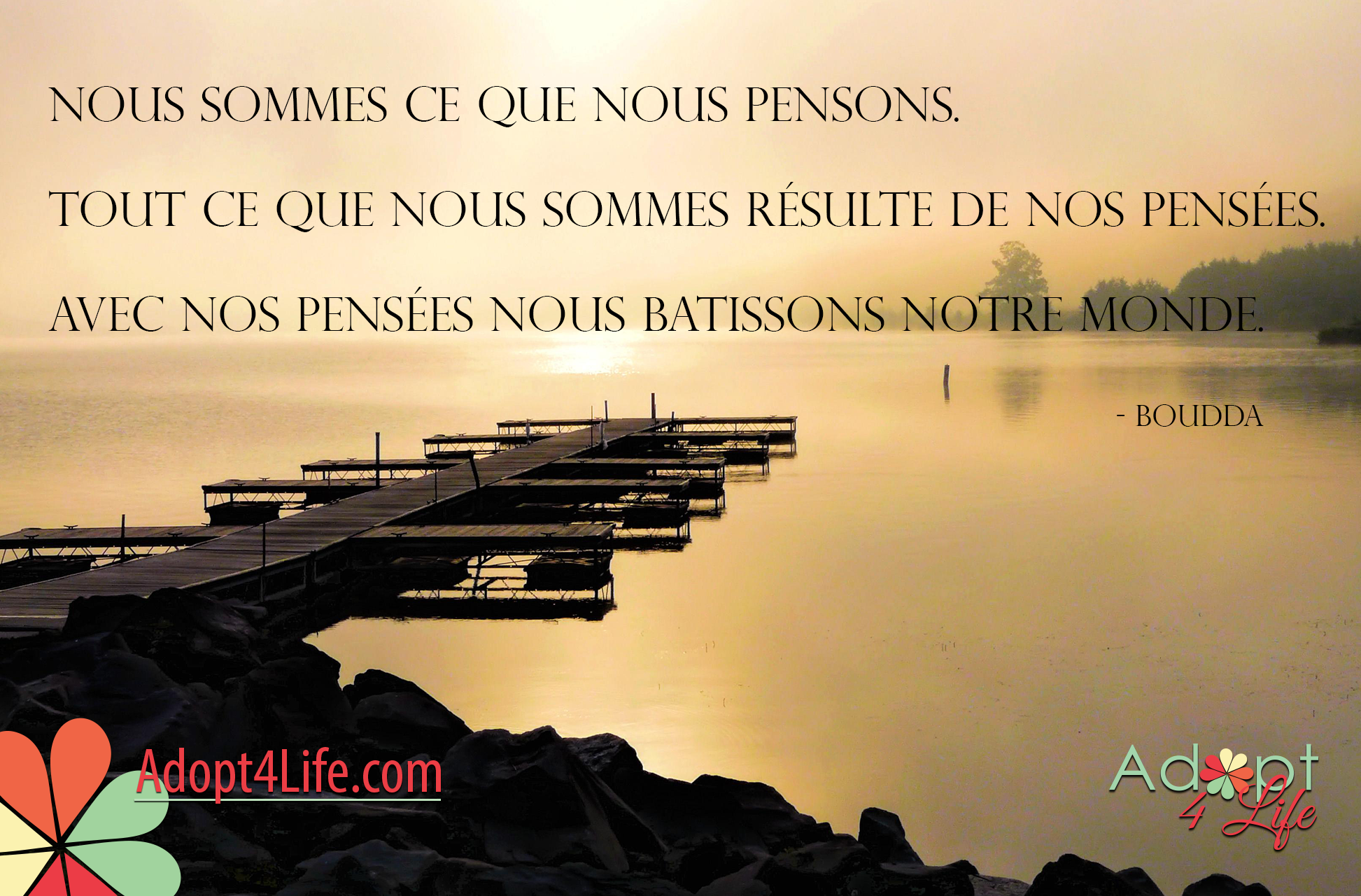 Facebook_AdoptionQuote_French_033_Dec2014_png.png