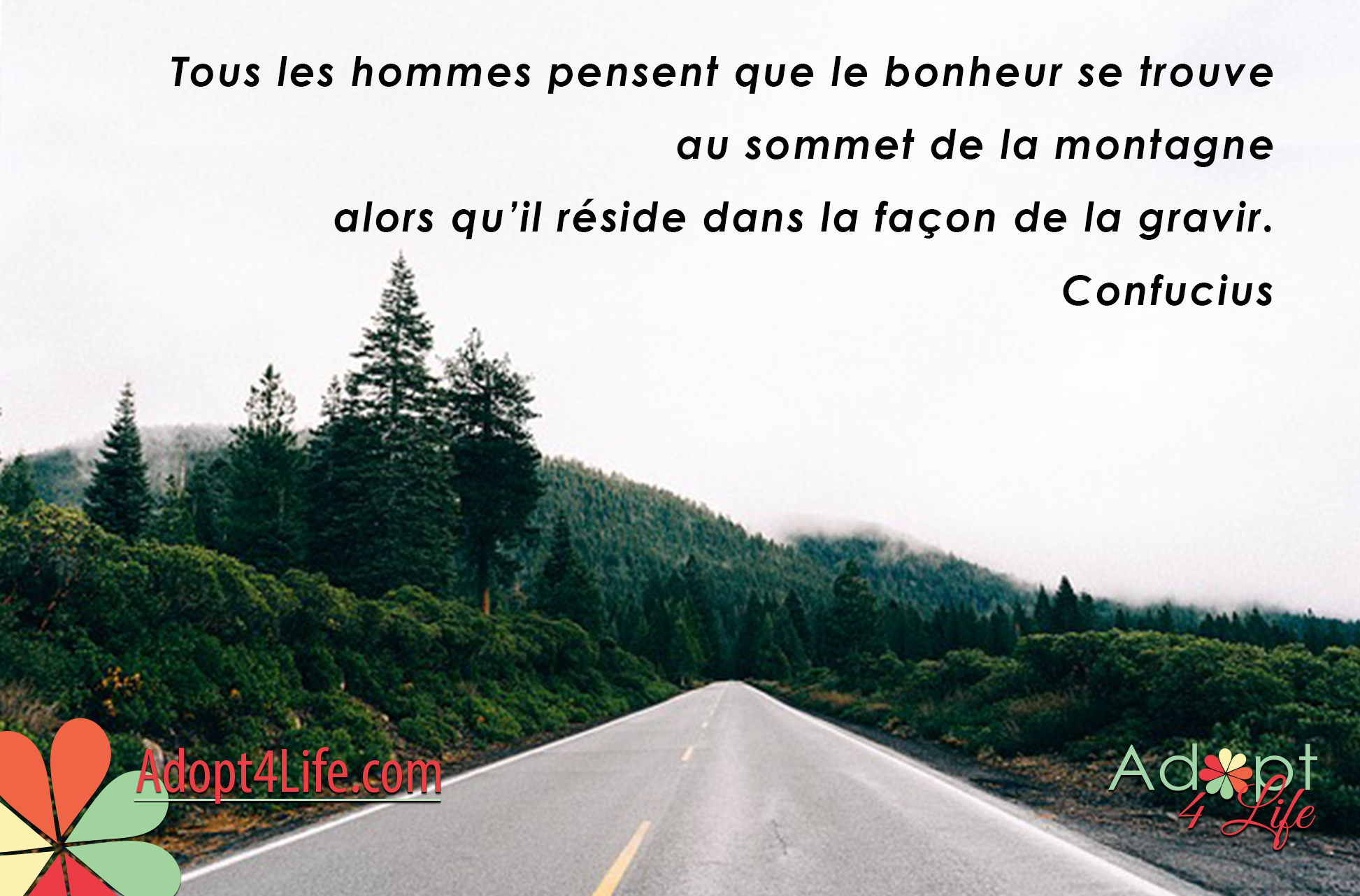 Facebook_AdoptionQuote_French_035_Dec2014_png.png