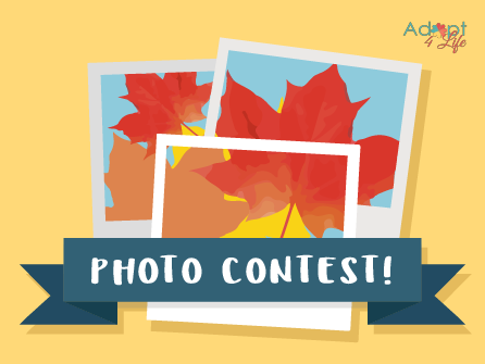 photocontest_2-06.png