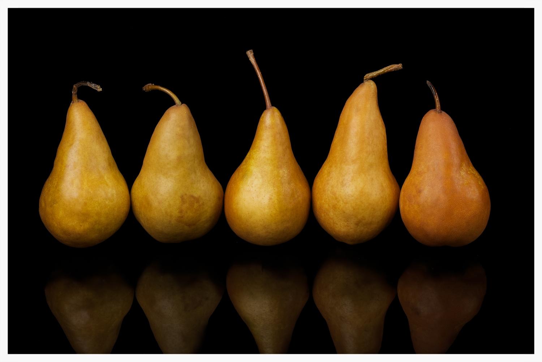 03.23.13_Brown_Pears_066_081.jpg