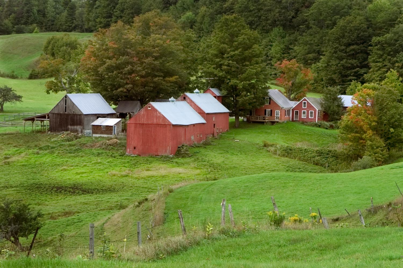 9.21.04_Jenne Farm_1691.jpg