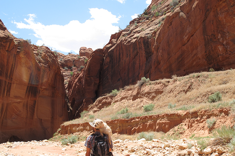 The first 1.5 miles of the Buckskin Gulch trail was flat, dusty, and hotter than a pepper sprout. Grom's little paws couldn't take the heat, lucky for him Adam toted him into the slot canyons.