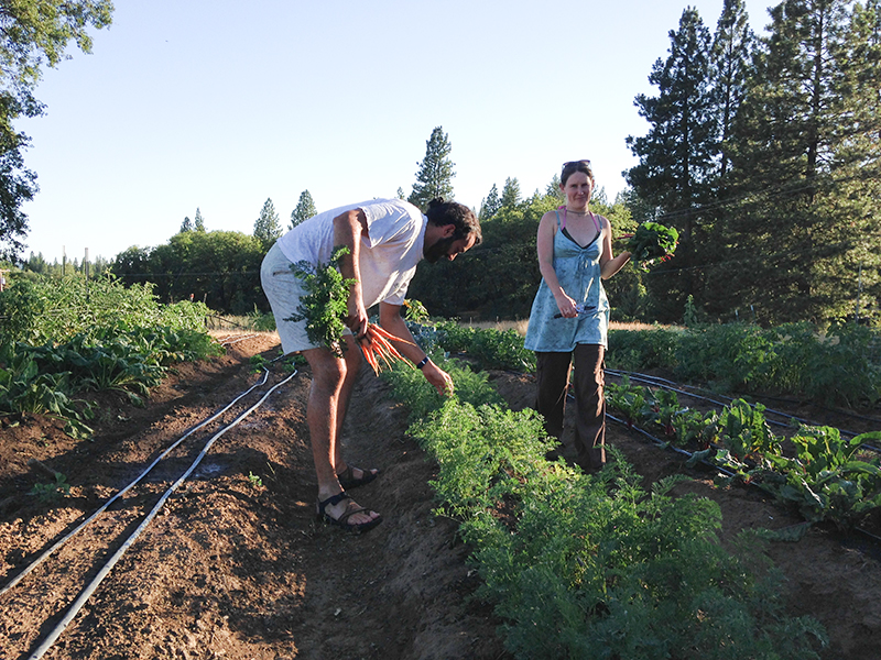 Each day we spent on the farm ended just like a dream. We picked everything we wanted to eat, cooked a delicious plate of meat, and drank the wine made from grapes of the farm. Heaven.