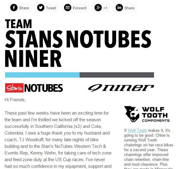 TeamStansNiner_Newsletter2