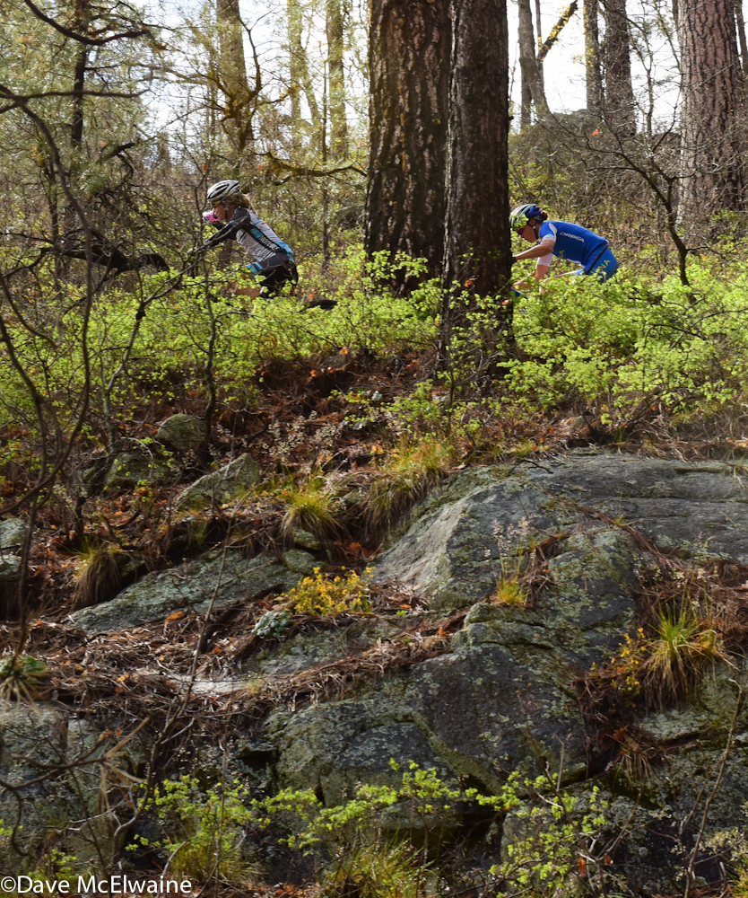 A little rain makes the Prescott National Forest appear lush. Here we are climbing on Trail 327.