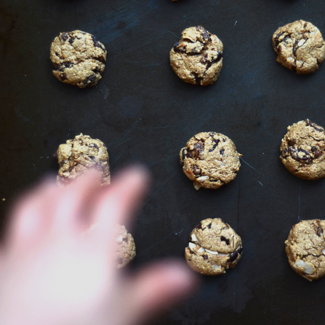 olive oil oatmeal cookies - gluten free, vegan