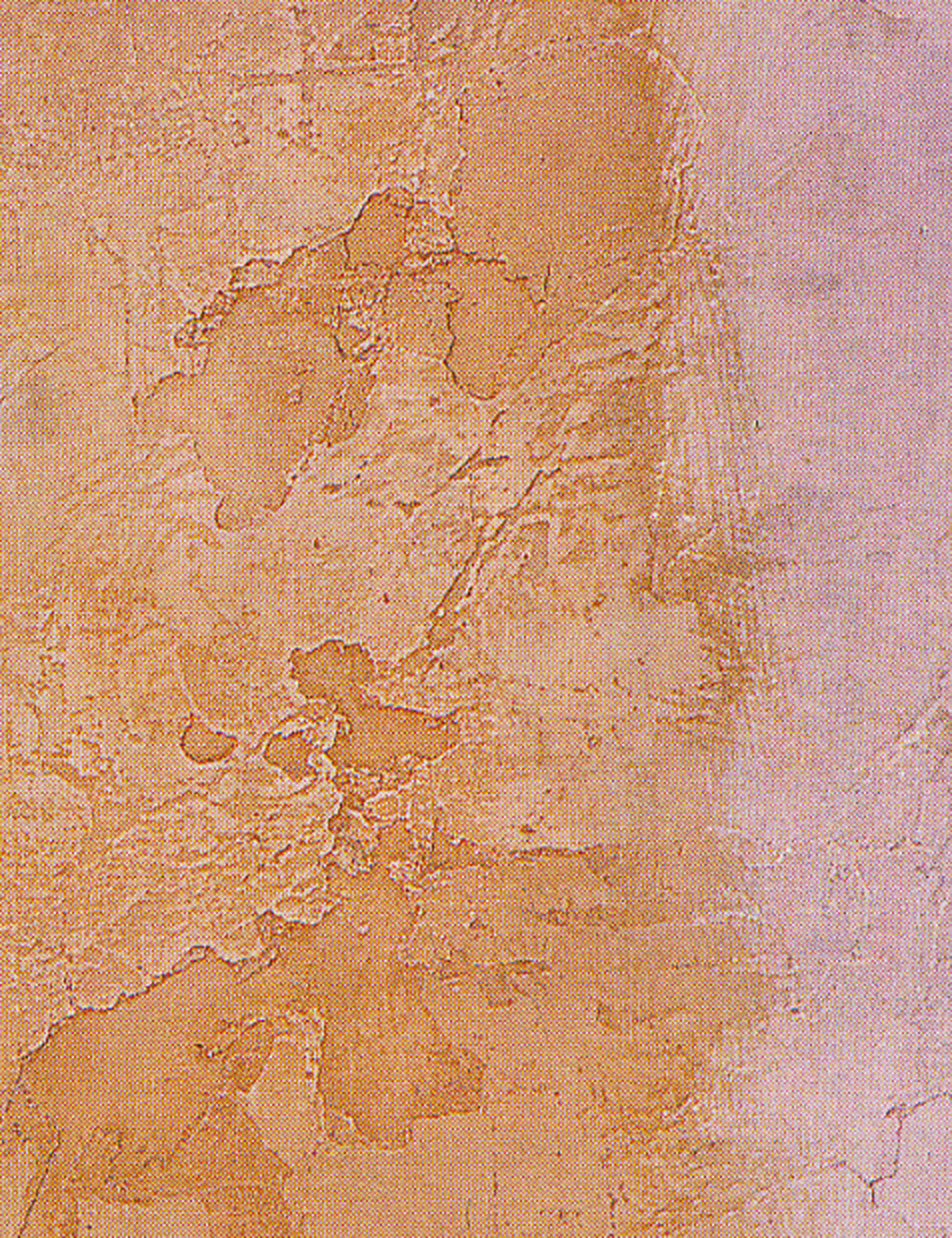 Rustic Surface with Color Wash Plaster