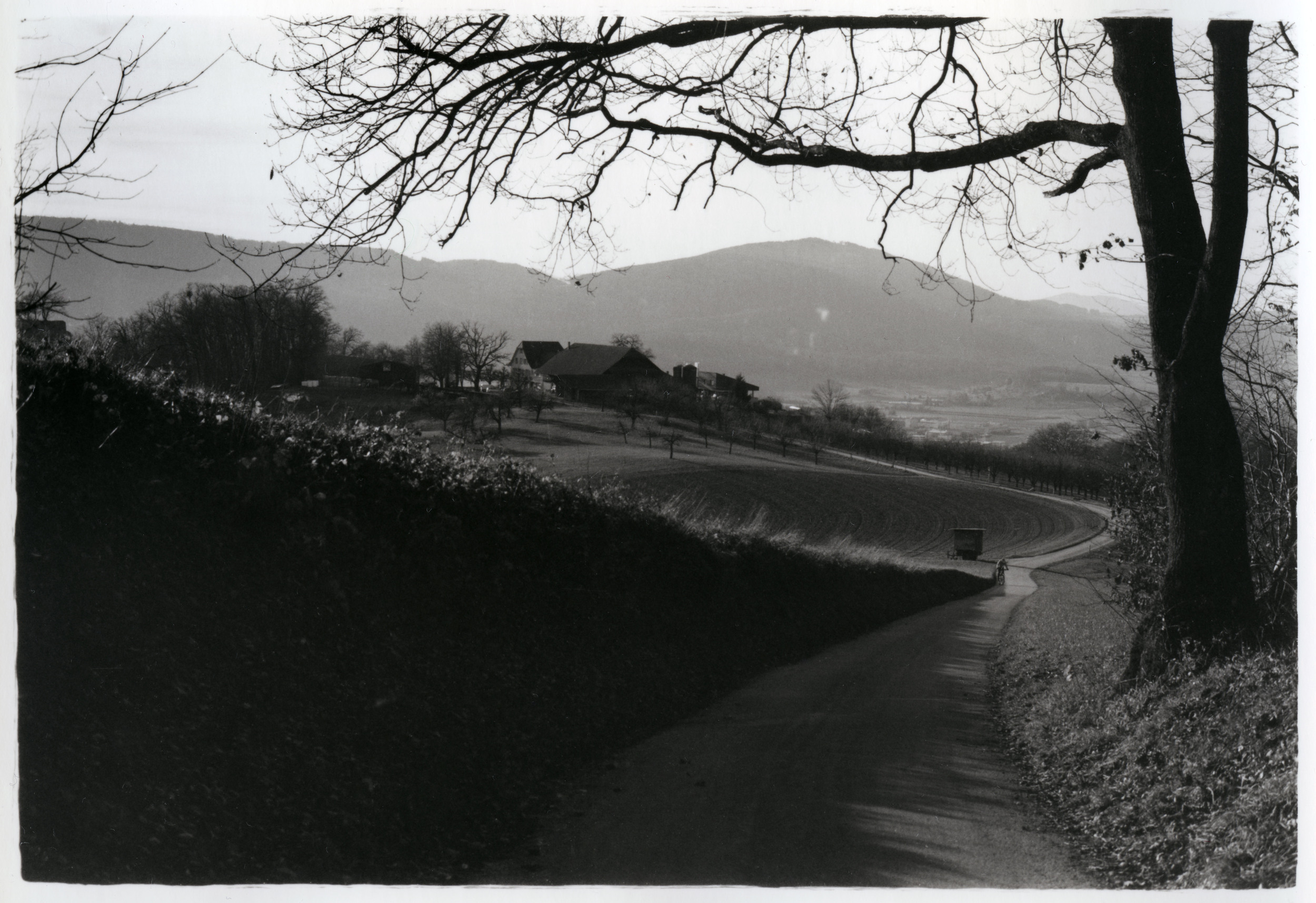 Hiking    Silver Gelatin Print, Switzerland, 2014