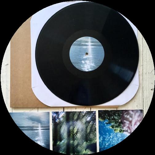 telegraphic-tree-artwork-artist-bio-records.png