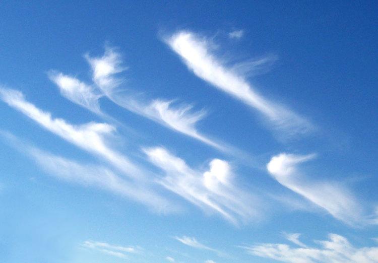 Cirrus_clouds2.jpg