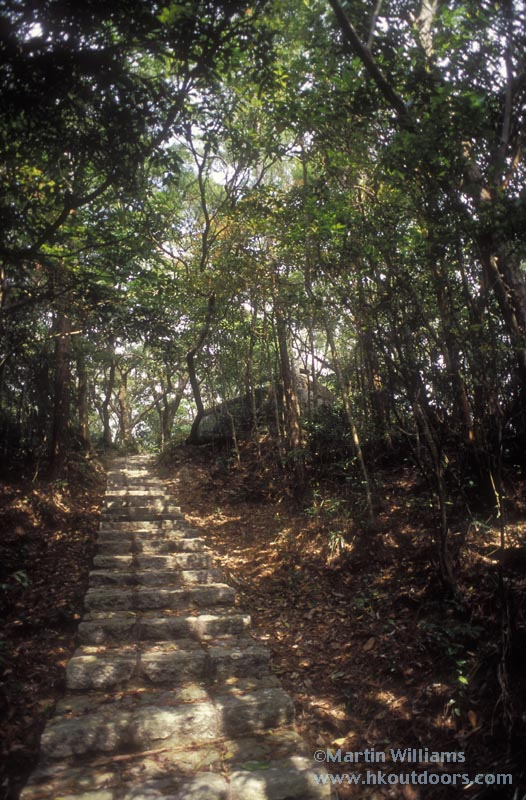 wong-nai-chung-gap-trail.jpg