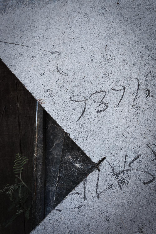 035_Surface_Archeology_0092.jpg