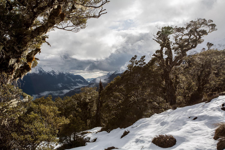 028_Kiwi_Mountains_0999.jpg