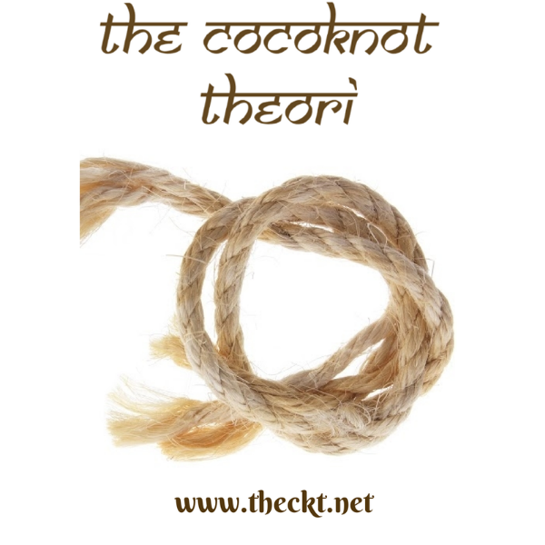 The Cocoknot Theori
