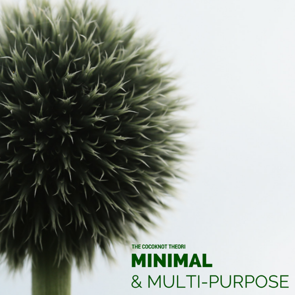 minimal multi-purpose the cocoknot theori