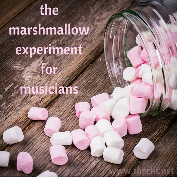 marshmallow experiment power of habit willpower the cocoknot theori