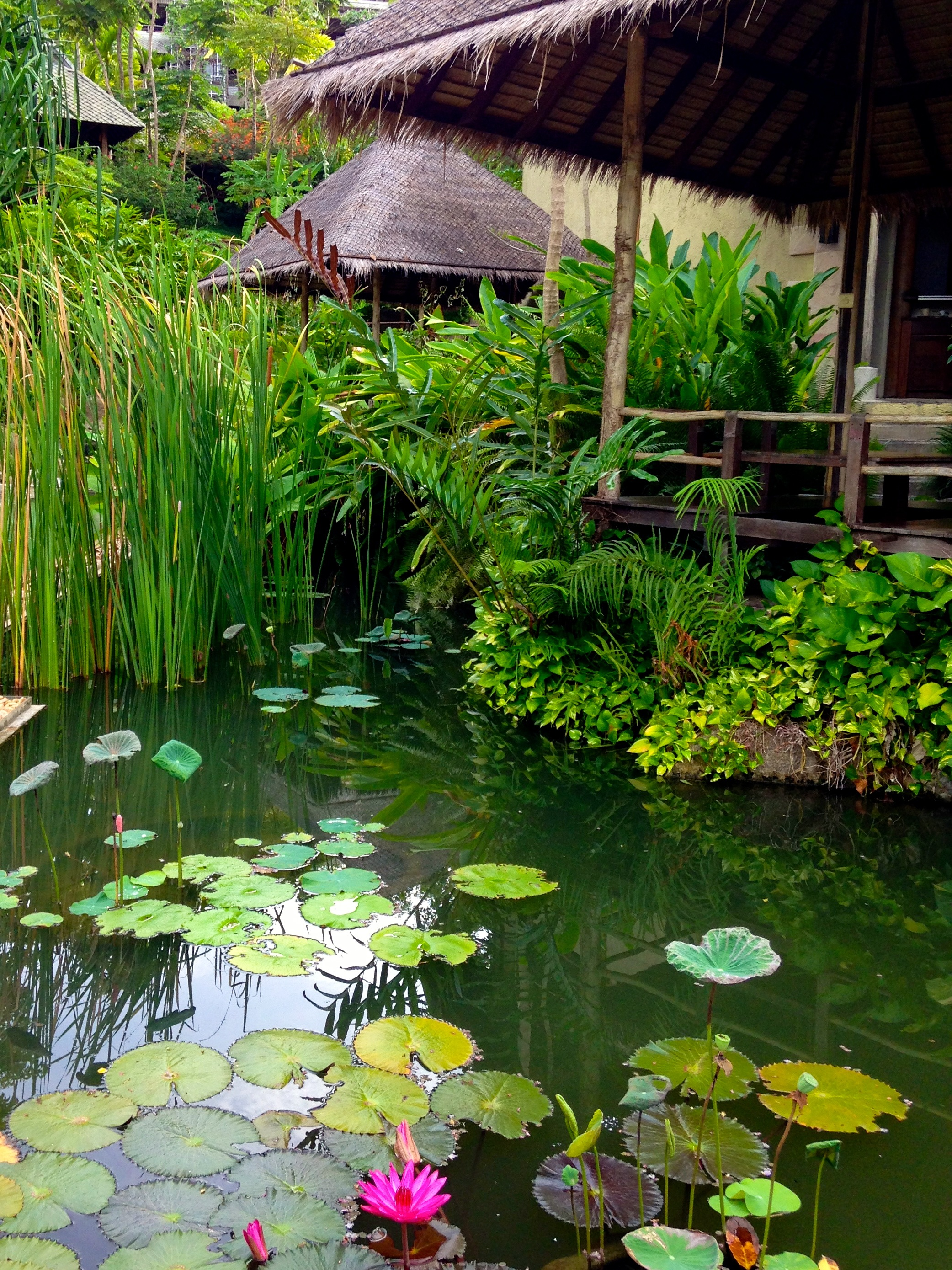 kamalaya-retreat-experience-mindful-morning-garden