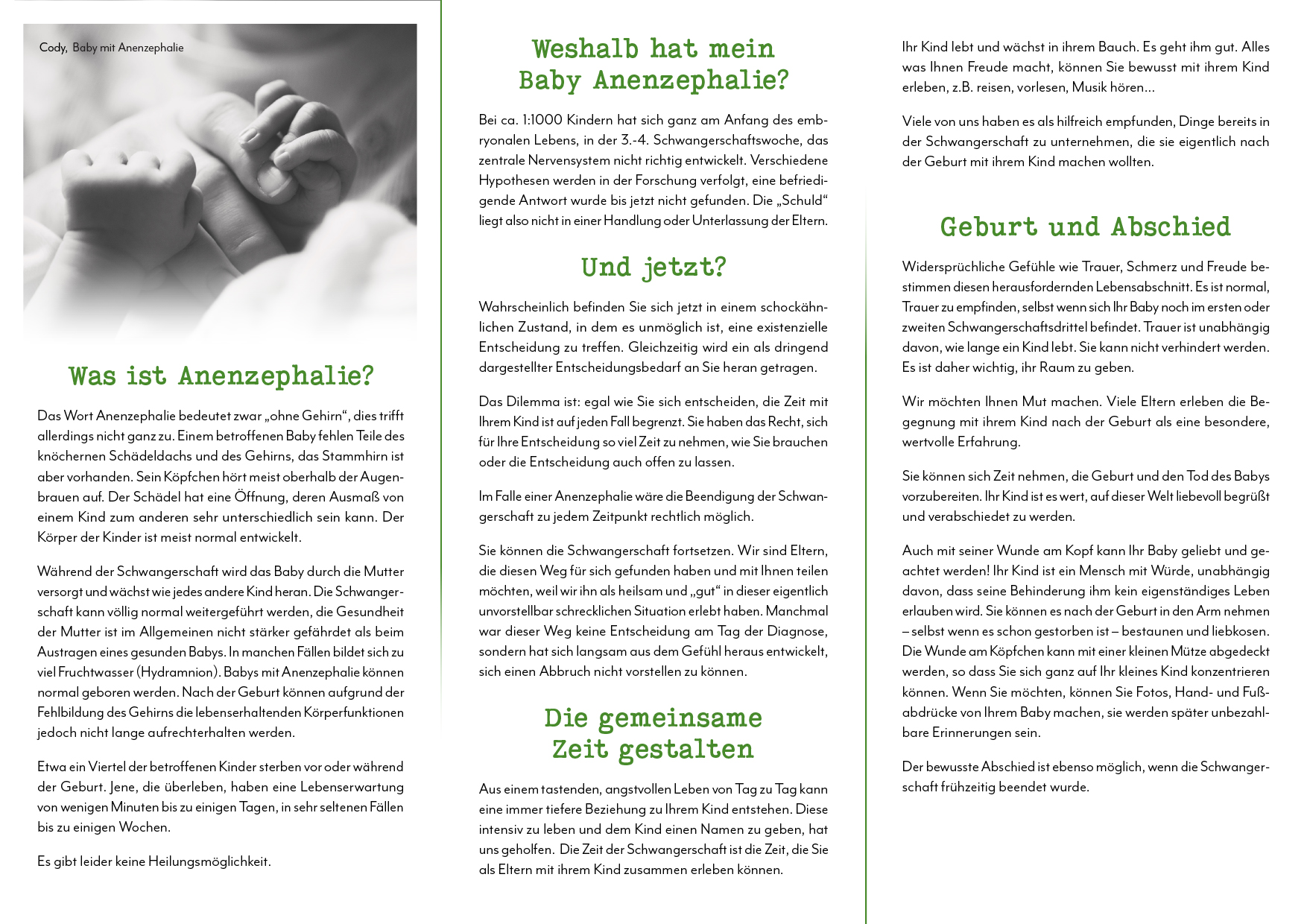 Anencephaly Brochure - DEUTSCH-2.jpg