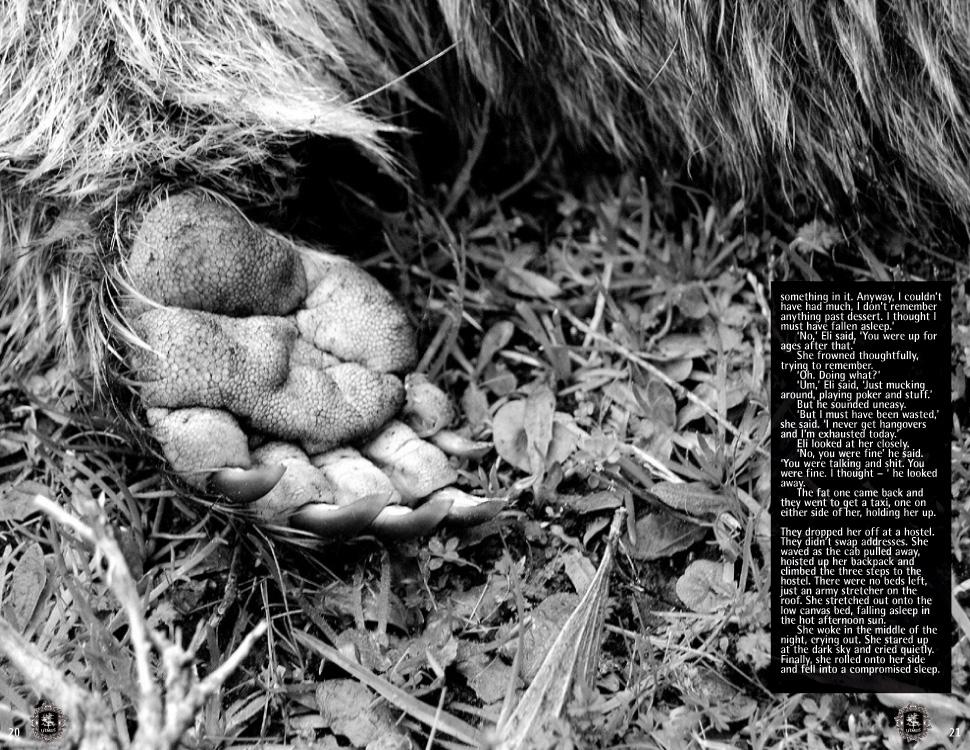 The_Road_Wombat.jpg