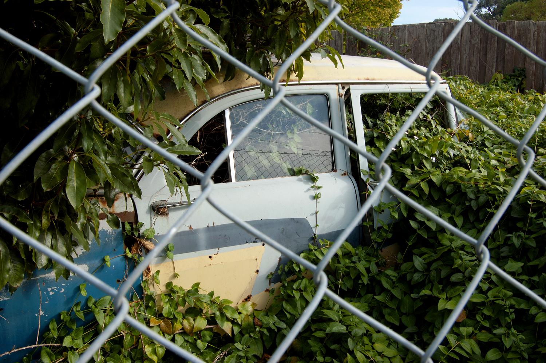 untitled #144 [erica, victoria, australia, 2010]