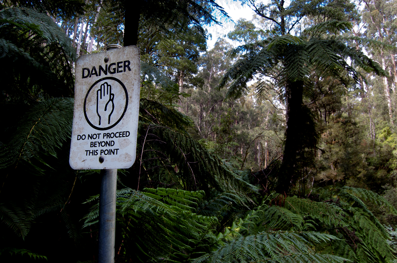 danger: do not proceed beyond this point [tarra falls, tarra bulga national park, victoria, australia, 2010]