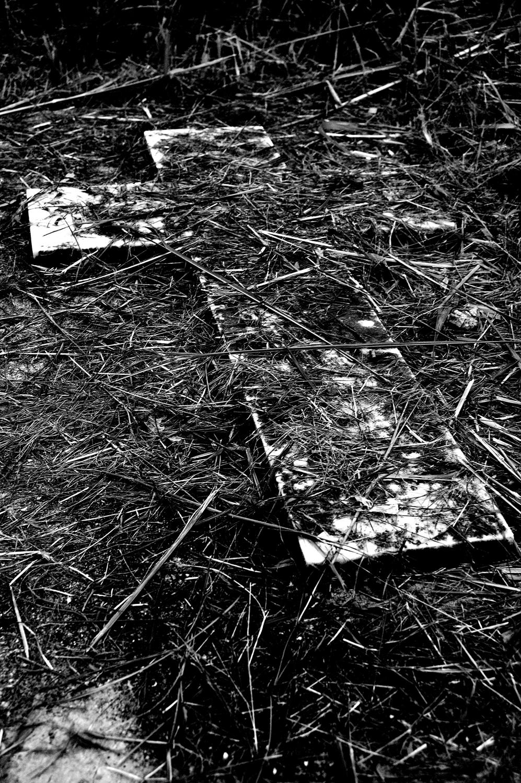 untitled #186  [hong kong protestant cemetery, happy valley, hong kong, 2006]