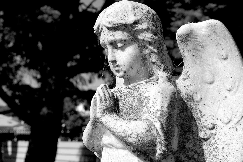 untitled #4  [melbourne general cemetery, parkville, victoria, australia, 2005]