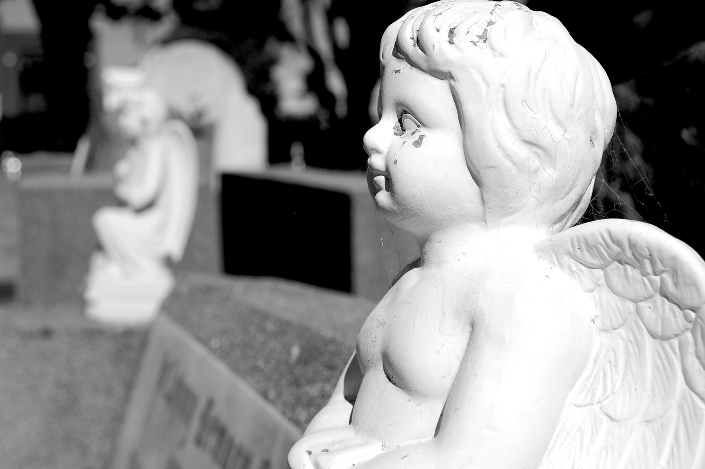 untitled #34  [melbourne general cemetery, parkville, victoria, australia, 2005]