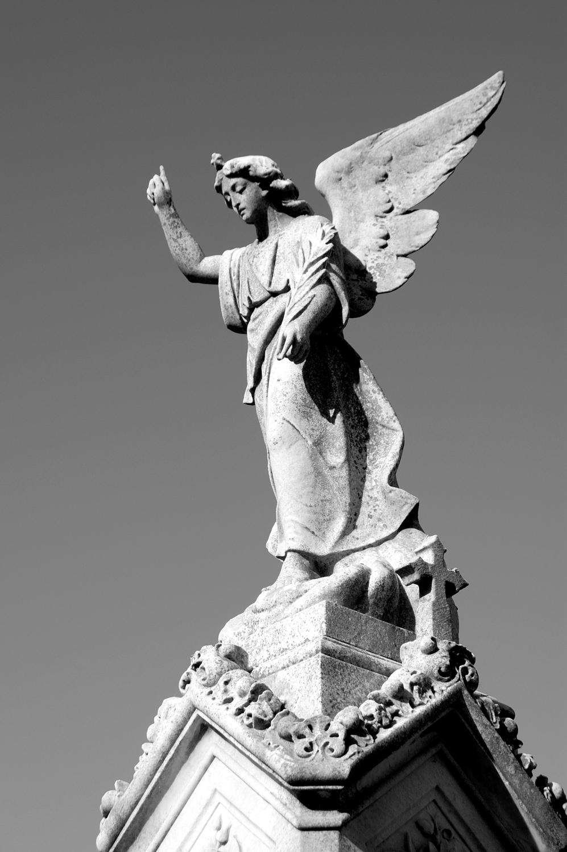 untitled #79  [melbourne general cemetery, parkville, victoria, australia, 2005]