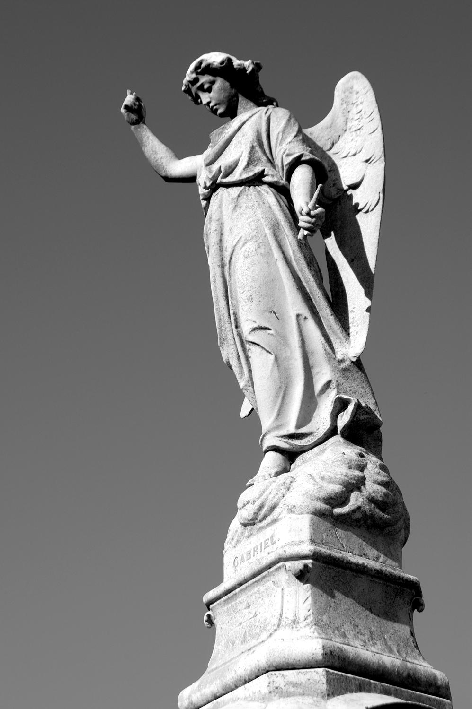 untitled #82  [melbourne general cemetery, parkville, victoria, australia, 2005]