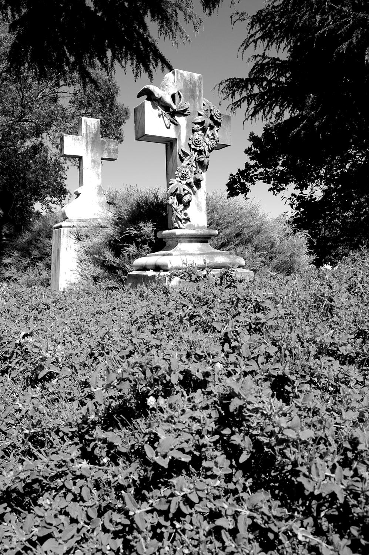 untitled #98 [napier cemetery, napier, hawke's bay, new zealand, 2005]