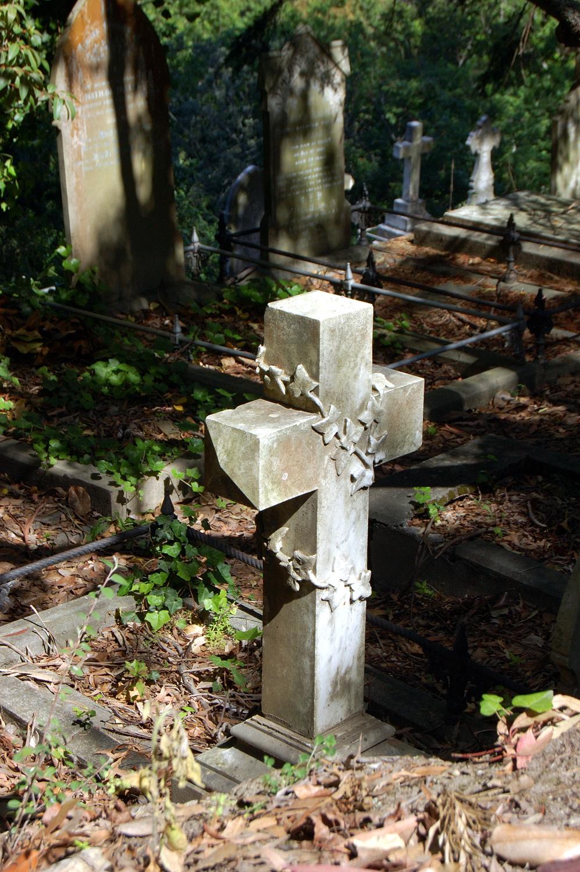 untitled #114 [napier cemetery, napier, hawke's bay, new zealand, 2005]