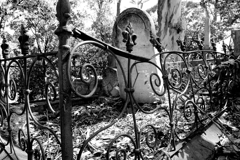 untitled #147 [napier cemetery, napier, hawke's bay, new zealand, 2005]