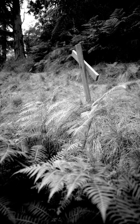 untitled #19 [walhalla public cemetery, walhalla, victoria, australia, 2005]
