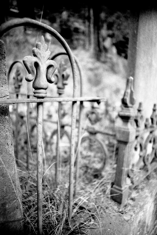 untitled #9 [walhalla public cemetery, walhalla, victoria, australia, 2005]