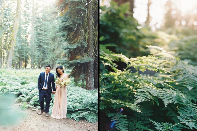 Meiwen Wang Photography-Yosemite Engagement 31.png