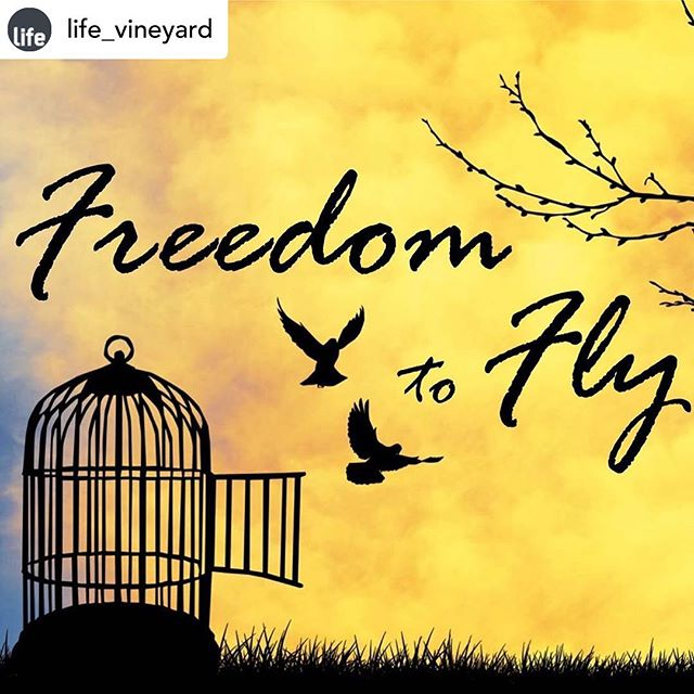 Our brilliant Rho @rhodafearon is speaking at @life_vineyard  first Beloved women's day conference which is happening on Saturday, October 12th, at our Wallsend site. Called Freedom To Fly, tickets cost £5 and can be booked online here https://beloved-conference.eventbrite.co.uk/