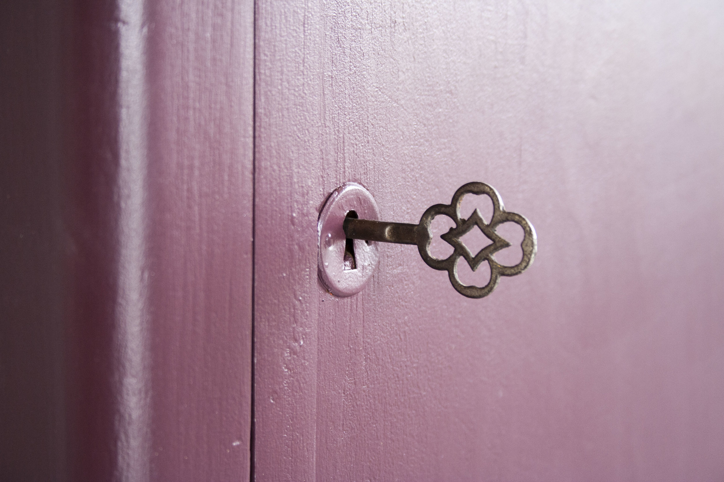 _Aubergine rode kast 1 deur- Firma Zoethout_3.jpg