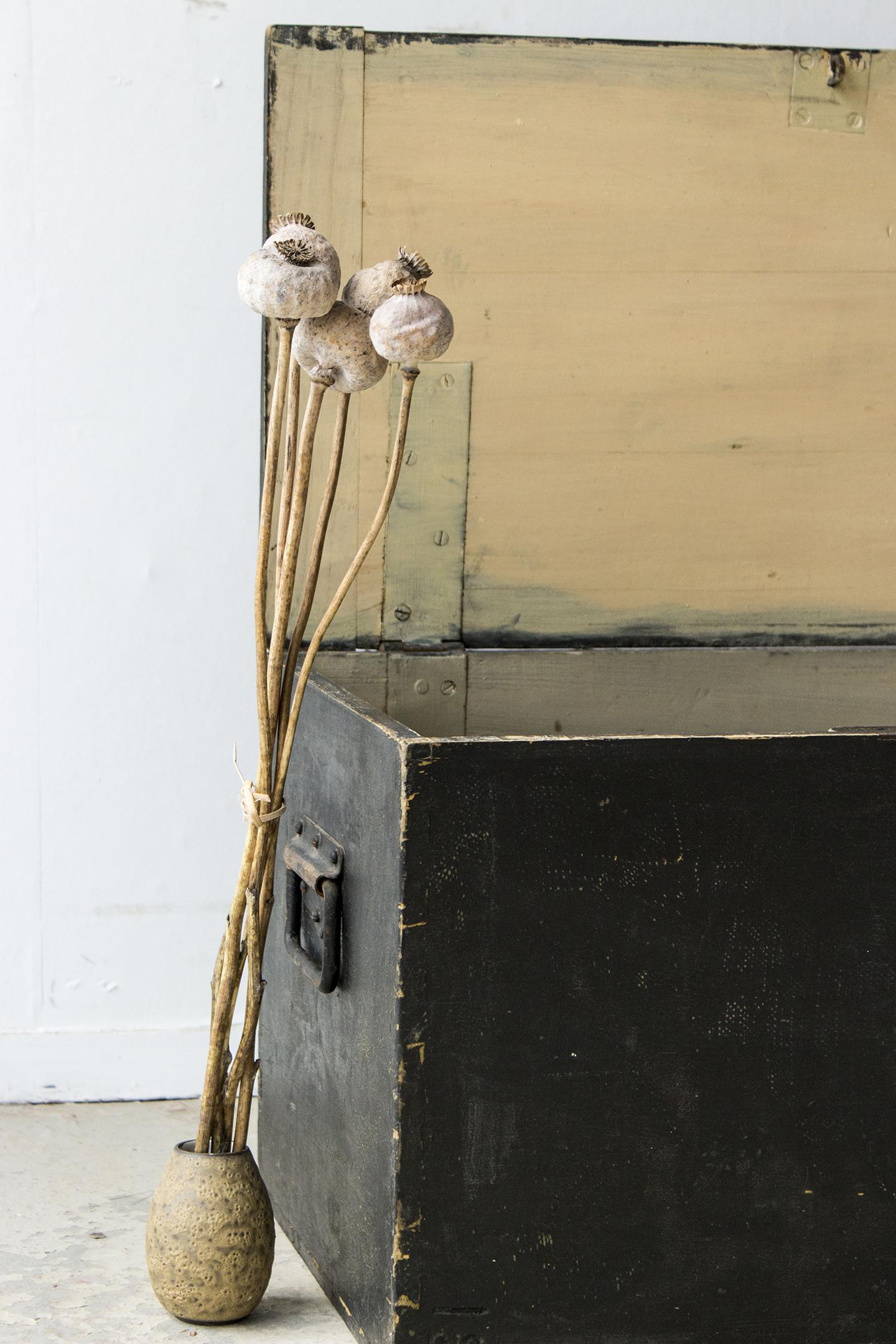 5040 - -Zwarte vintage speelgoedkist - Firma zoethout_2.jpg