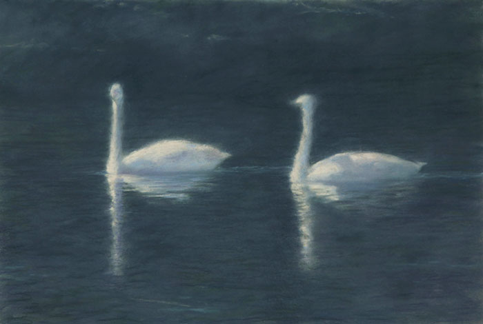 Two-Swans-700.jpg