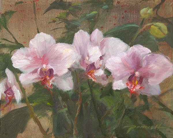 Orchids-600.jpg