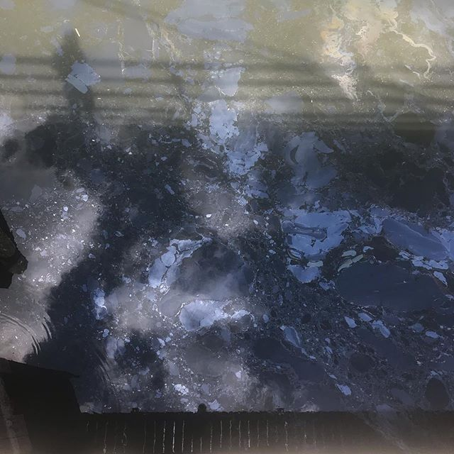 lavender lake 💞 . . . #gowanuscanal #lavenderlake #whatcoloristhat #savetheturtles #weskipthestraw #localsonly