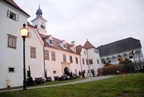a_Schloss_Dornhofen_06.jpg