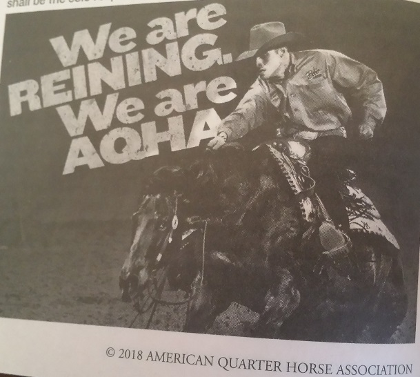 WE ARE REINING. WE ARE AQHA.jpg