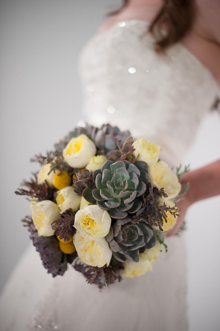 Succulent bridal bouquet with acacia, echeveria shaviana 'Truffles', echeveria 'Orion', dusty miller, craspedia, and Antique Romantica garden spray roses. By Cincinnati wedding florist Floral Verde.