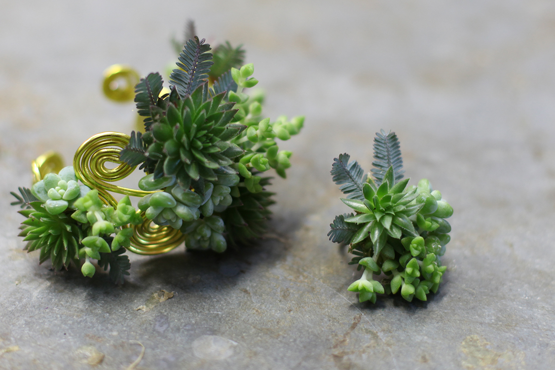 Floral bracelet and ring with succulents, mini crassula and acacia on aluminum wire. By Cincinnati wedding florist Floral Verde.