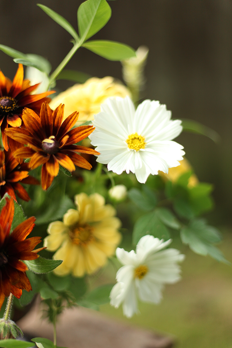 Centerpiece by Cincinnati wedding florist Floral Verde LLC. Centerpiece contains locally grown white cosmos, yellow zinnias, brown rudbeckia, chantilly snapdragons, scented geranium, baptisia and bleeding heart foliage.