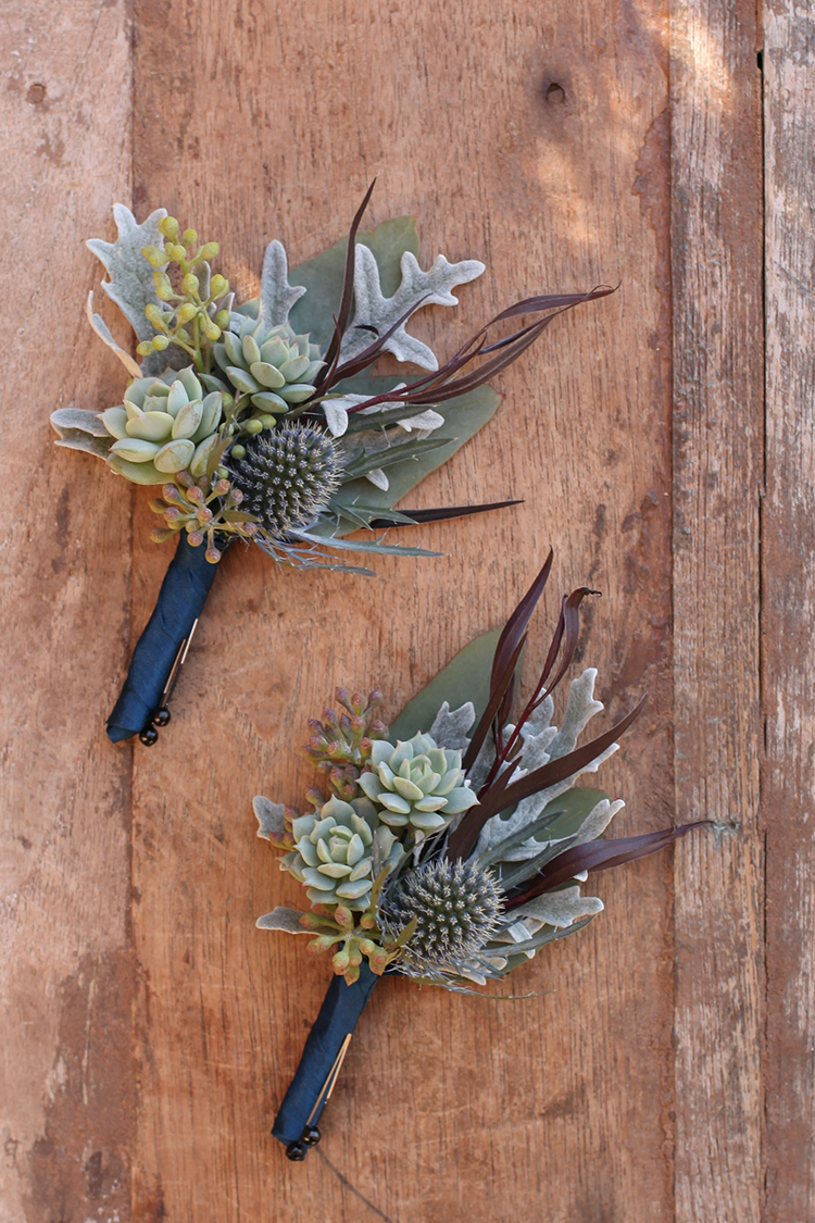 Succulent, thistle, agonis, dusty miller and seeded eucalyptus boutonniere by Cincinnati wedding florist Floral Verde.